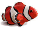 Project #2: Clown Fish