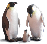 Project #3: Emperor Penguin Family