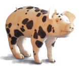 Project #4: Spotted Piglet