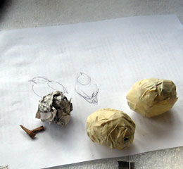 Paper Mache Bluebirds, Step 2