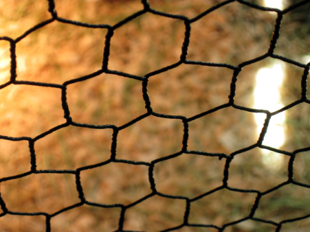 Vinyl-coated Chicken Wire