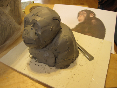 Chimpanzee Bust, Step 1