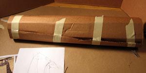 Step 1 - Paper Mache Giraffe