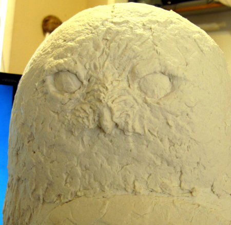 Snowy Owl Eyes, Step 2