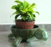 Paper Mache Tortoise Planter