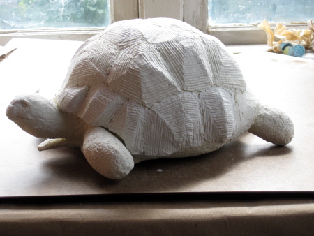 Ploughshare Tortoise, Adding Textures
