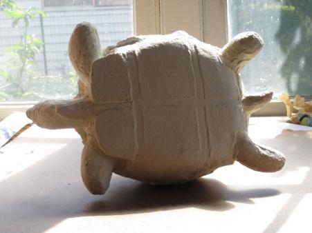 Ploughshare Tortoise, Upside Down