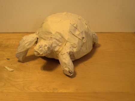 Ploughshare Tortoise Sculpture, Step 2