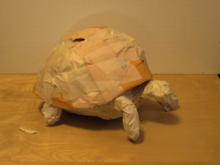 Ploughshare Tortoise Sculpture, Step 3