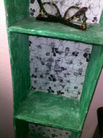 Paper Mache CD Storage Shelves