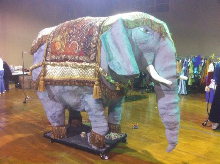 Another View of the Elephant