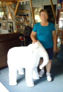 Carol with her baby elephant